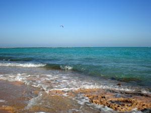Берег Красного моря