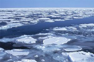 Лед Японского моря
