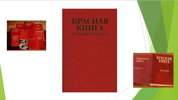 Презентация Красная Книга Татарстана